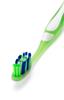 Brosse à Dents X-Clean