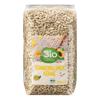 Graines de Tournesol Bio | بذور عباد الشمس